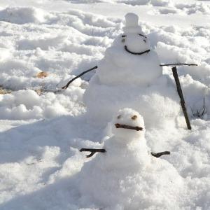 snowman-344498_1280